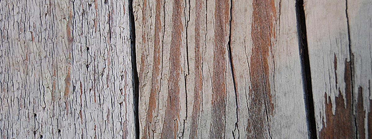 colla epossidica per legno